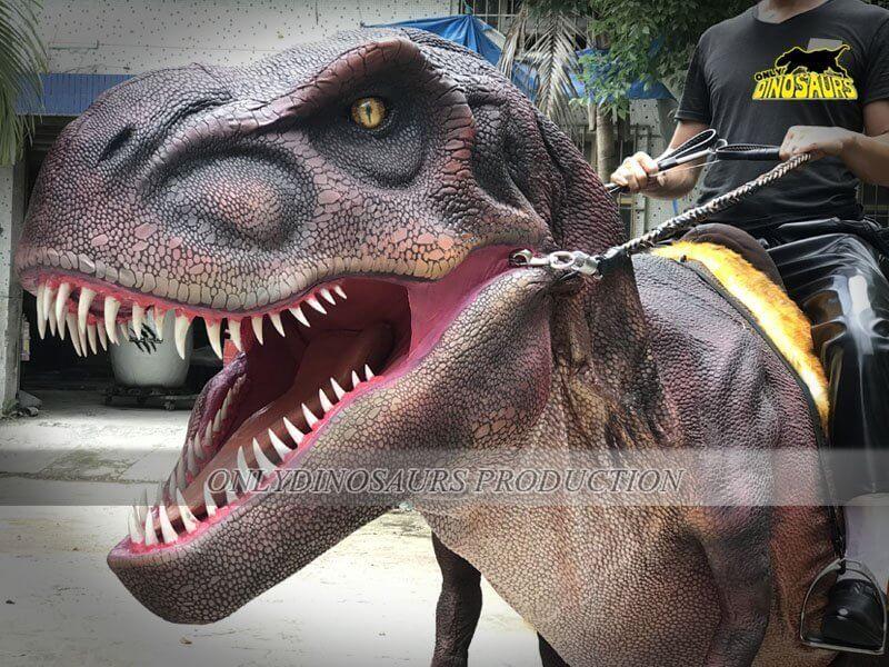 Realistic Riding Dinosaur Costume 4