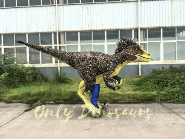 Realistic Velociraptor Costume with Feathers 2