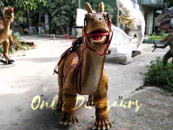 Ride an Amargasaurus Dinosaur coin operated4