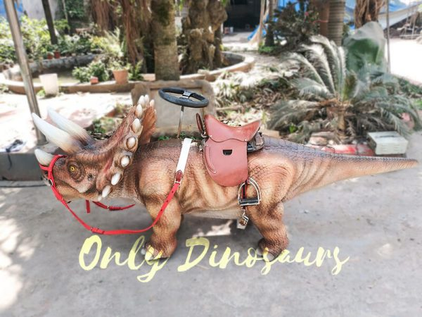 Shopping Mall Dinosaur Rides for sale1