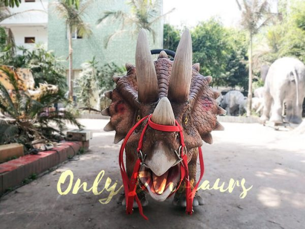 Shopping Mall Dinosaur Rides for sale2