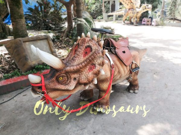 Shopping Mall Dinosaur Rides for sale5