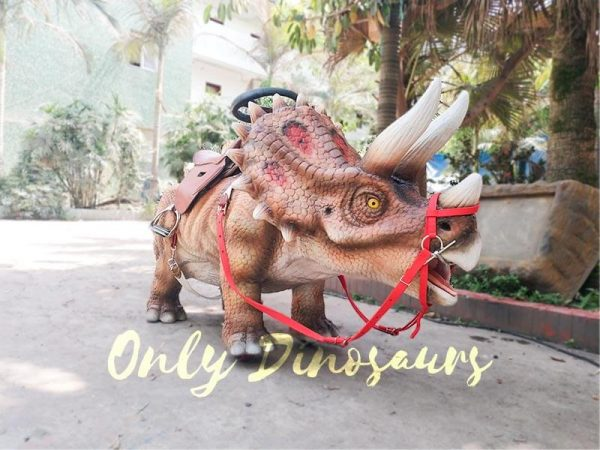 Shopping Mall Dinosaur Rides for sale6
