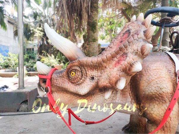 Shopping Mall Dinosaur Rides for sale8