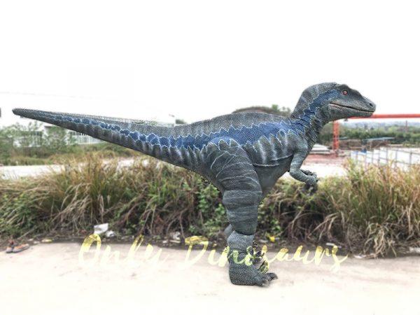 Spray water Dinosaurs Halloween Costumes Raptor2