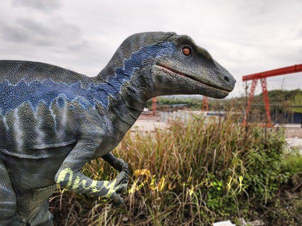 Spray water Dinosaurs Halloween Costumes Raptor3