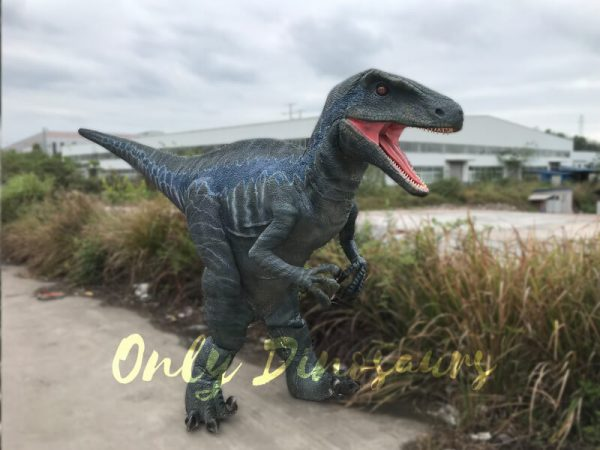 Spray-water-Dinosaurs-Halloween-Costumes-Raptor5