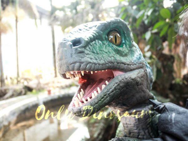 Velociraptor Baby Hand Puppet Lifelike Puppet6