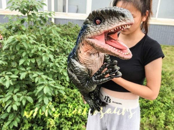 Velociraptor-Hand-Puppet-With-Beautiful-Eyes4-4