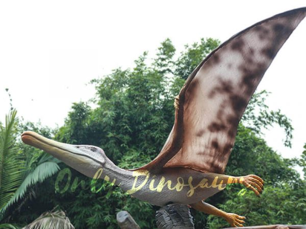 Vivid Mated Animatronic Pterosaur for Display4
