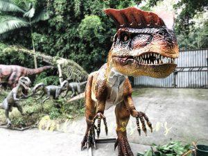 Horror Animatronics Dilophosaurus for Jurassic Adventure