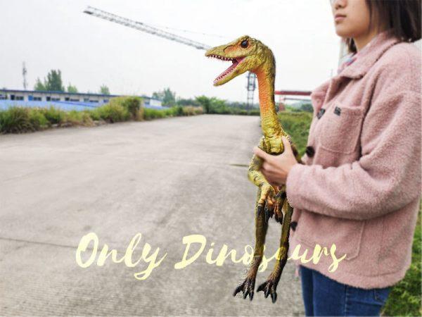 Custom-Mini-Compsognathus-Hand-Puppet5