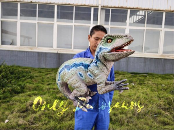Custom-Raptor-Hand-Puppet-for-Party2