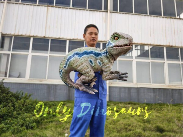 Custom-Raptor-Hand-Puppet-for-Party6