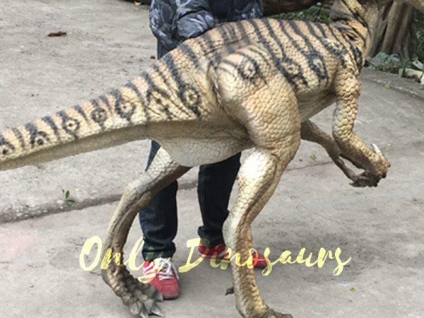 Portable-Dinosaur-Puppet-Masiakasaurus-for-Actor2-2