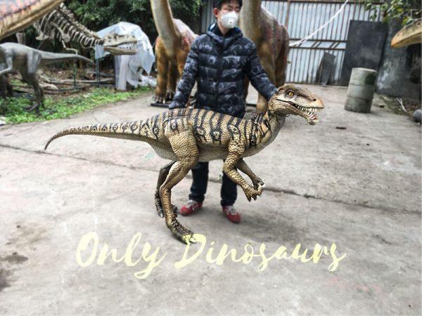 Portable-Dinosaur-Puppet-Masiakasaurus-for-Actor2