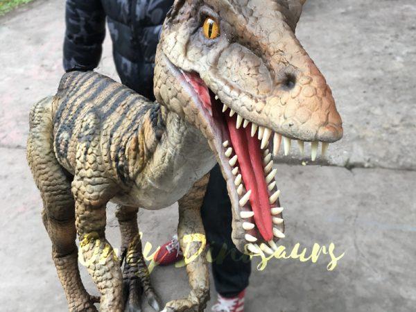 Portable-Dinosaur-Puppet-Masiakasaurus-for-Actor3-2