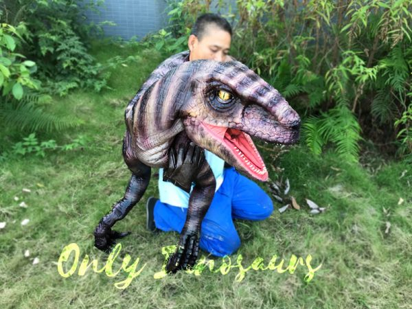 Realistic-Shoulder-Raptor-Puppet-with-Glove-5
