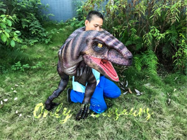 Realistic-Shoulder-Raptor-Puppet-with-Glove1