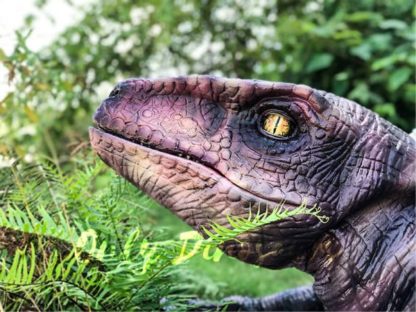 Realistic-Shoulder-Raptor-Puppet-with-Glove2