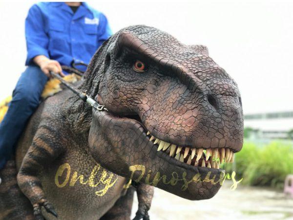 T-Rex-Riding-Dinosaur-Costume-on-Stilts1