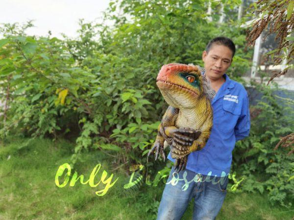 Beautiful-Feathered-Raptor-Handheld-Puppet3