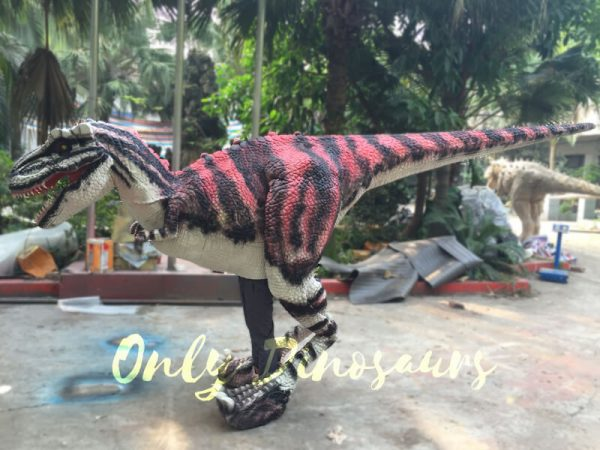 Charming-Streaked-T-Rex-Costume-For-Stage-Show444