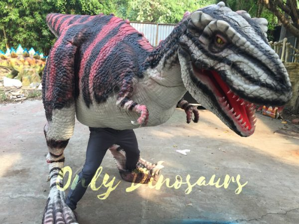Charming-Streaked-T-Rex-Costume-For-Stage-Show555