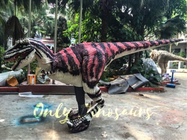 Charming-Streaked-T-Rex-Costume-for-Stage-Show3