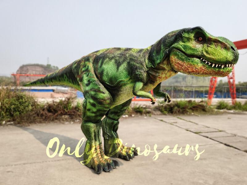Giant-T-Rex-Costume-6M-Long-3M-High1