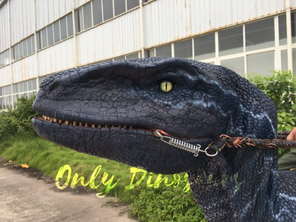 Jurassic-Park-Velociraptor-Costume-with-Digitigrade-Stilts4