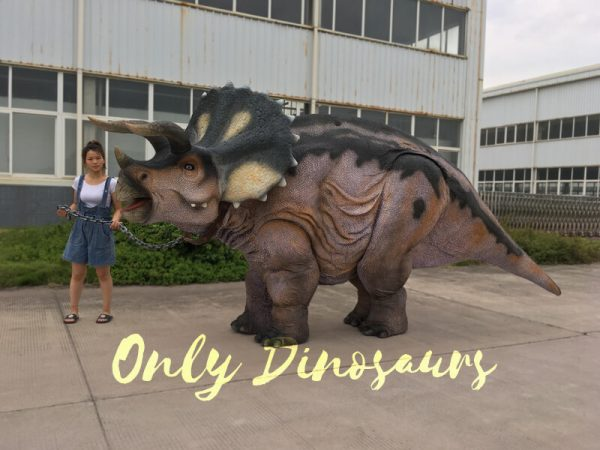 Realistic-Triceratops-Costume-for-Two-Adults1