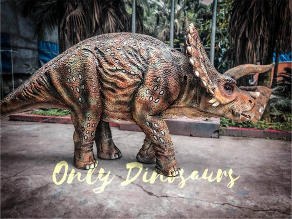 Two-person-Spotted-Triceratops-Costume1