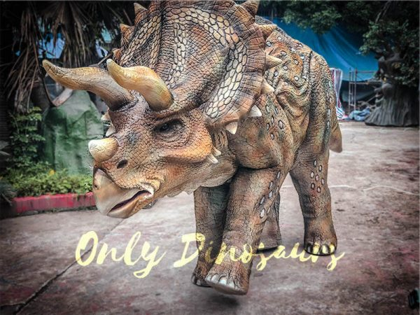Two-person-Spotted-Triceratops-Costume2