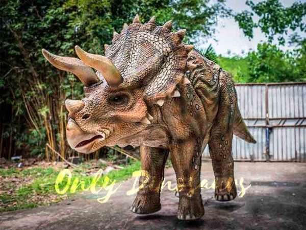 Two-person-Spotted-Triceratops-Costume3