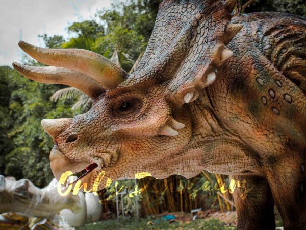 Two-person-Spotted-Triceratops-Costume5