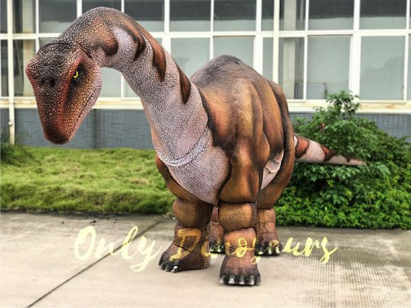 Vivid-Two-person-Apatosaurus-Costume-For-Stage-Show1-1