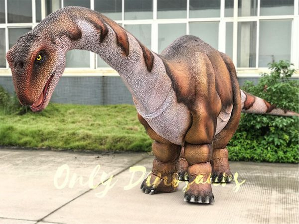 Vivid-Two-person-Apatosaurus-Costume-For-Stage-Show3-1