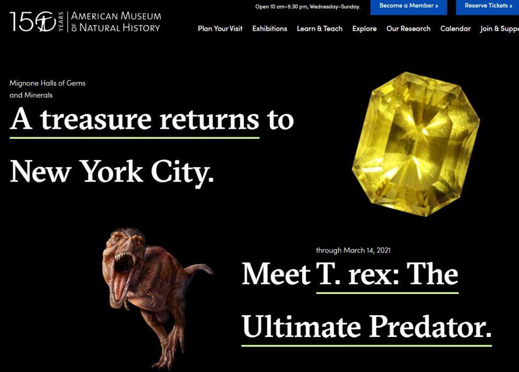 Authoritative Dinosaur Knowledge Websites american-museum-pic1