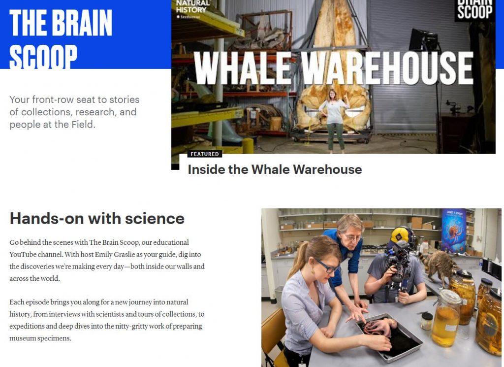 Authoritative Dinosaur Knowledge Websites field-museum-pic4