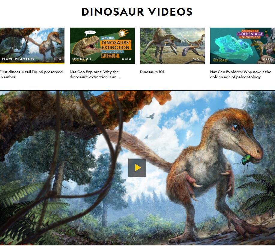 Authoritative Dinosaur Knowledge Websites nationalgeographic-pic3