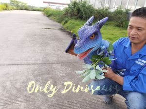 Baby Purple Dragon holder puppet for puppeteer