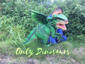 Cool Winged Green Handheld Dragon