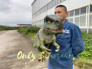 Dark Green T-Rex Hand-Held Puppet for kids