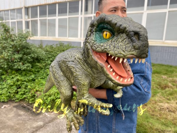 Dark-Green-T-Rex-Hand-Held-Puppet-for-kids3
