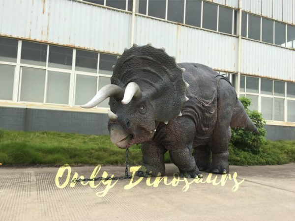Gray-Two-person-Triceratops-Costume1-1