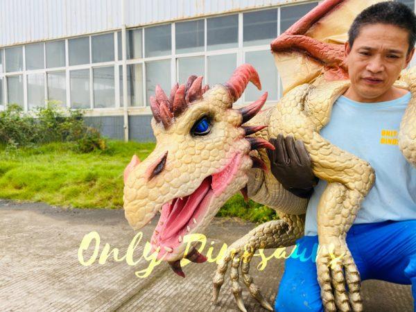 Kingly-Golden-Dragon-Full-Body-Puppet4