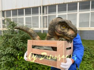 Lifelike Crate T-rex Baby Puppet