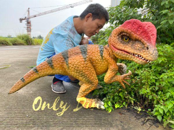 Lovely-Baby-Dilophosaurus-Handheld-Puppet2