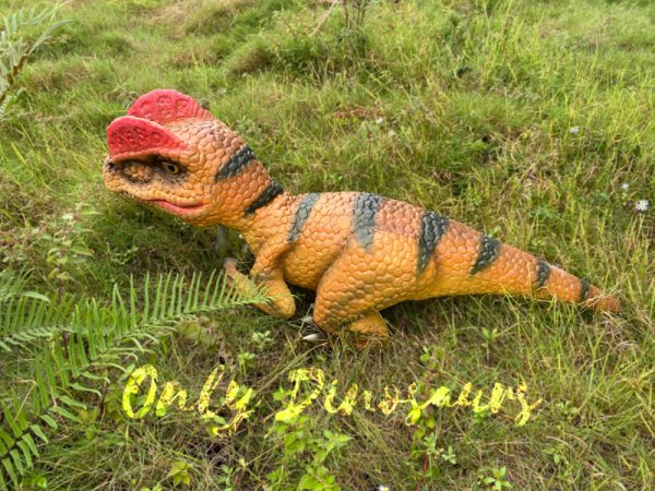 Lovely-Baby-Dilophosaurus-Handheld-Puppet5